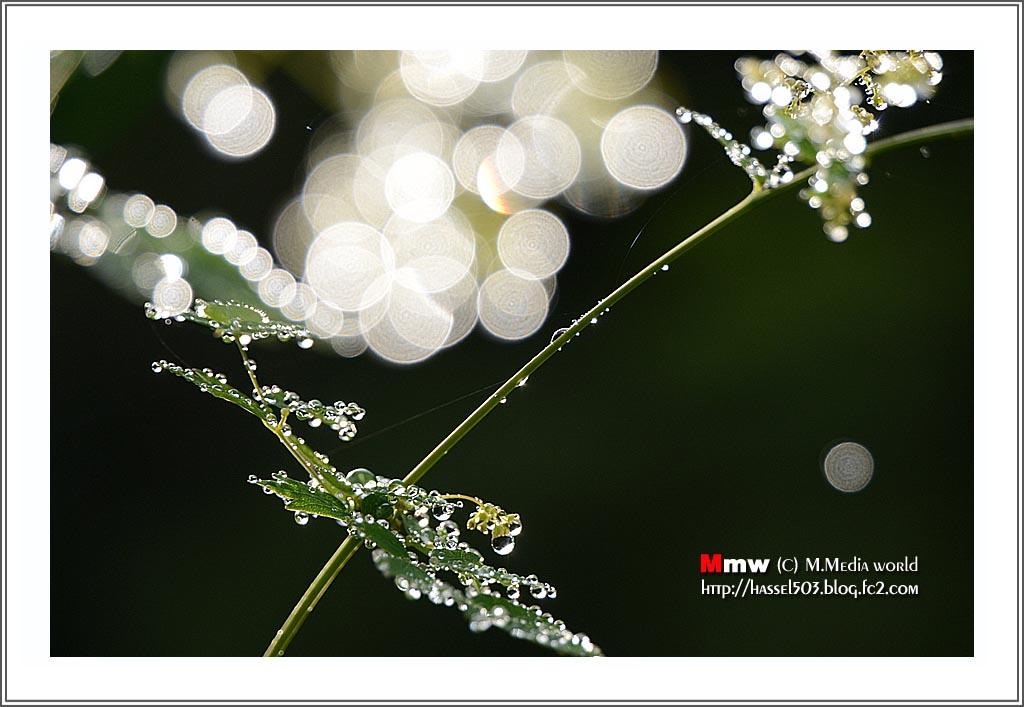 16_7_25.jpg