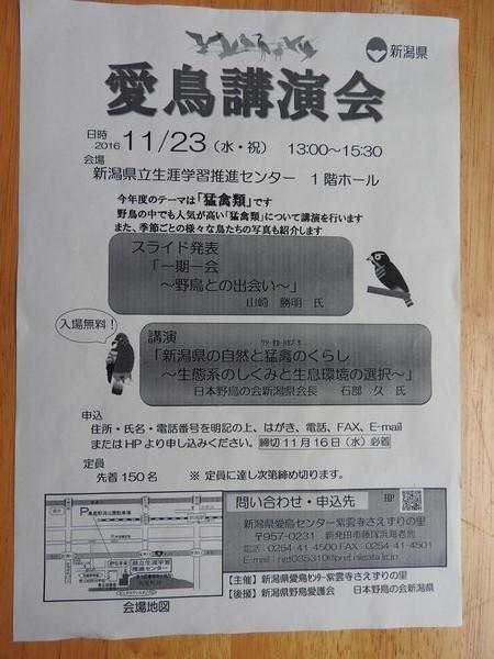 DSCN3050.jpg