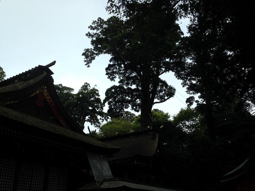 鹿島神宮 (12)1