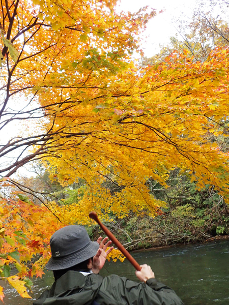 千歳川でカヌー11