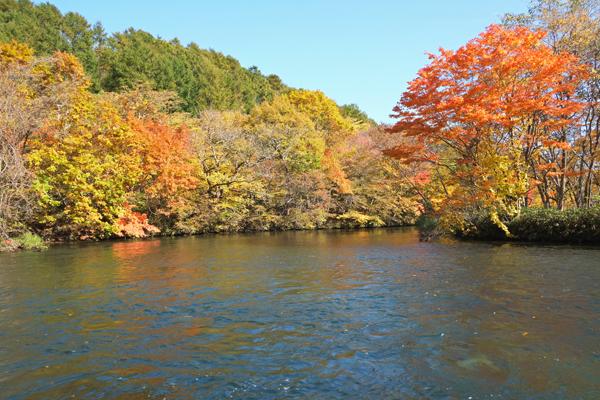 千歳川でカヌー21