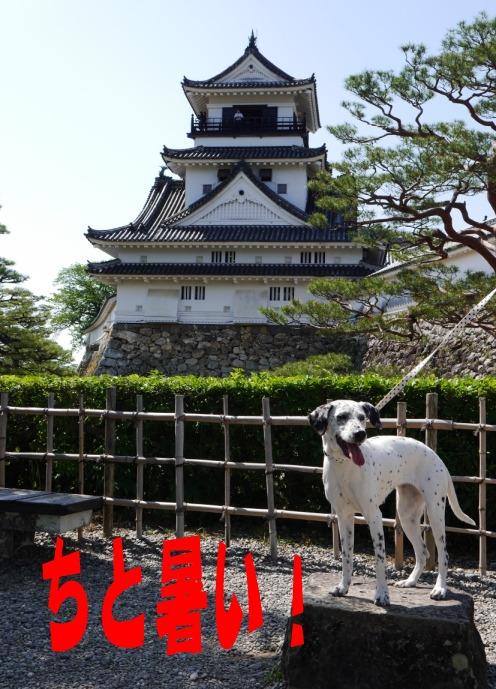 blog_0430_094209.jpg