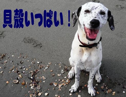 blog_0710_074820.jpg