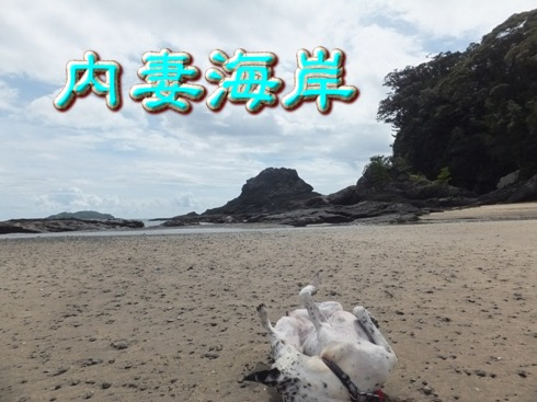 blog_0917_131823.jpg
