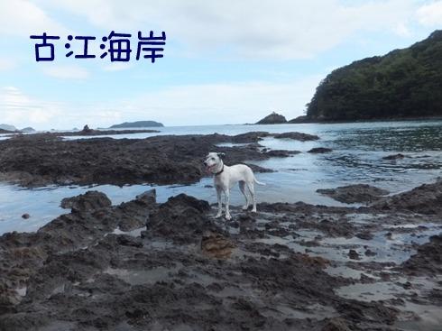 blog_0917_151148.jpg