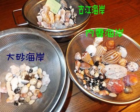 blog_0918_181801.jpg