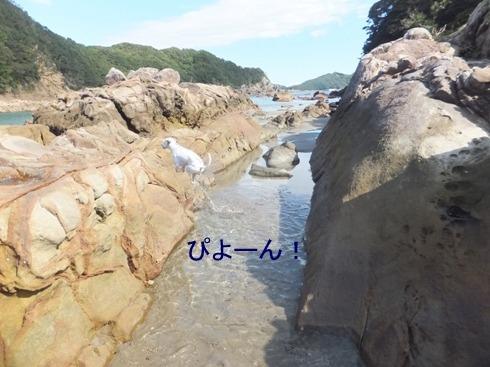blog_1029_130630.jpg