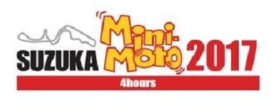 mini-mito4h.jpg