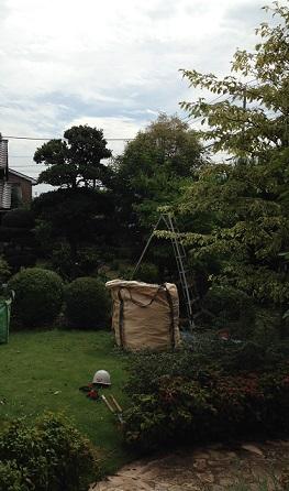 植木工事1
