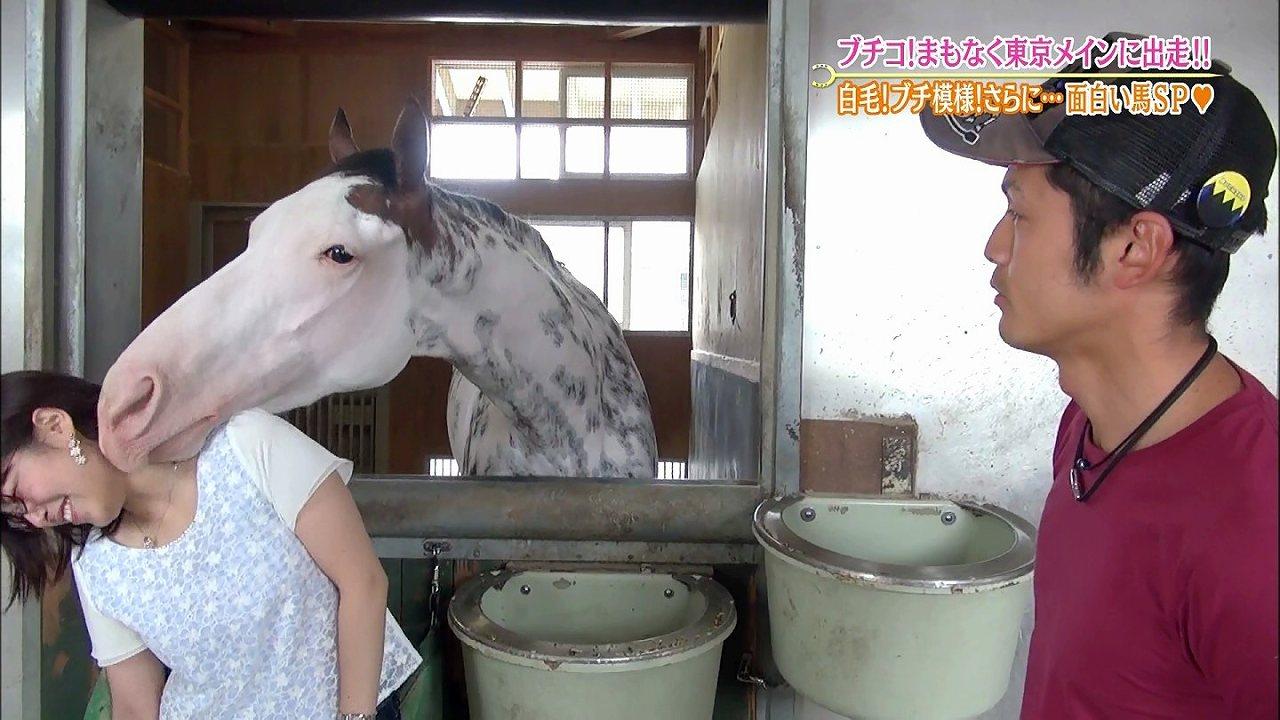 テレ東「ウイニング競馬」ロケで馬のブチコに匂いを嗅がれる鷲見玲奈