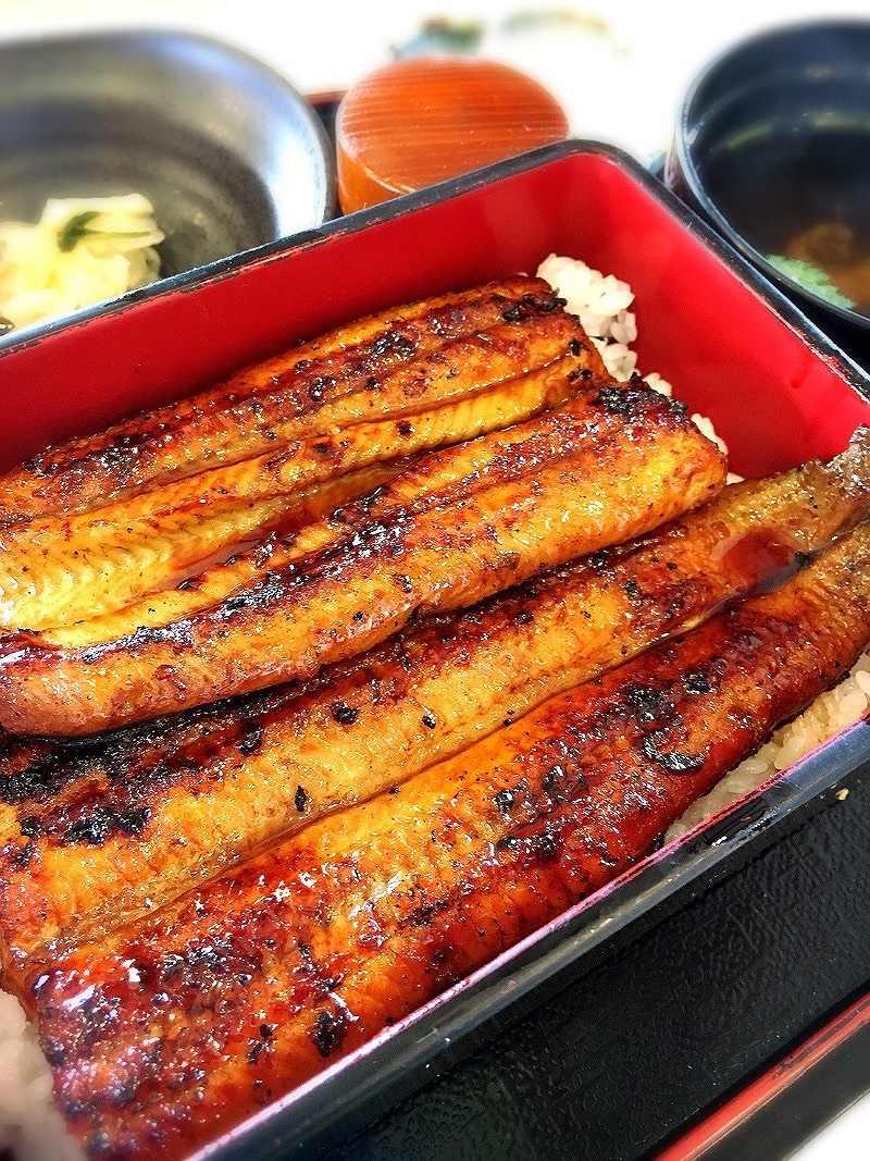 相澤仁美が食べた鰻
