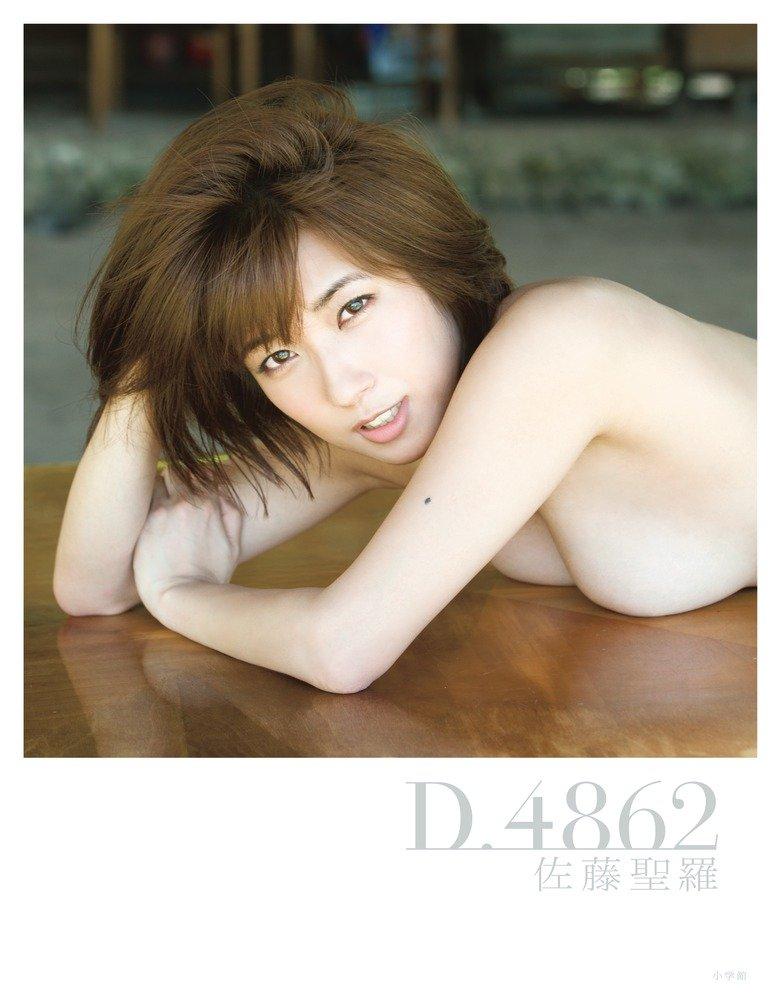 佐藤聖羅1st写真集「D.4862」表紙