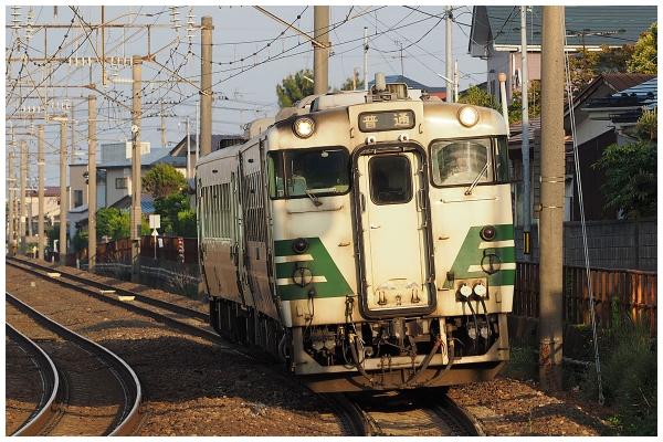 06P5220136-2co.jpg