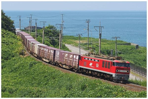 P8070129-2bo.jpg