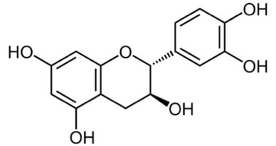 カテキン 化学式