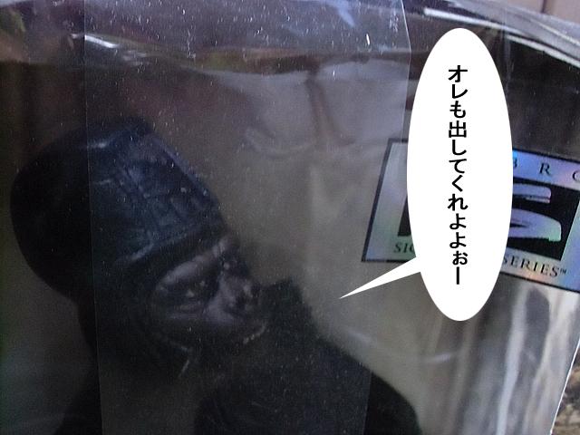 将軍閣下が見てました