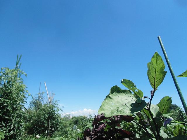 2016夏の空