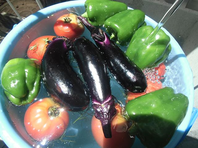 野菜を洗うたのしさ