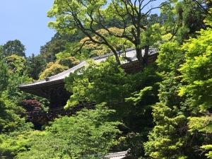 い一乗寺5 (2)
