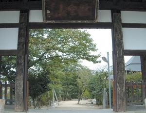 た太龍寺河内② (2)