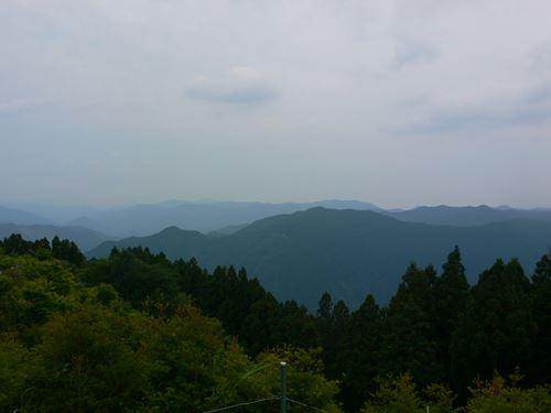 hanazonoajisai280627003_R.jpg