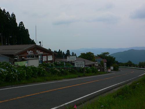 hanazonoajisai280627007_R.jpg
