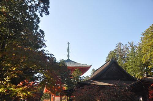 kouyakouyou1102004_R.jpg