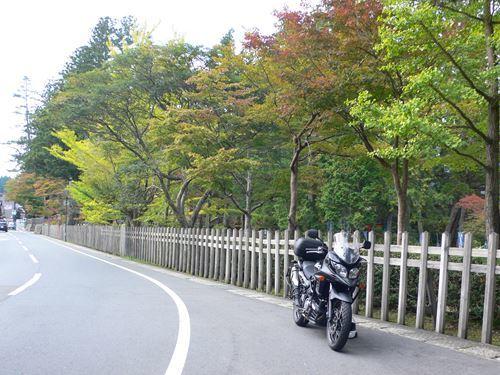 kouyakouyou1102009_R.jpg
