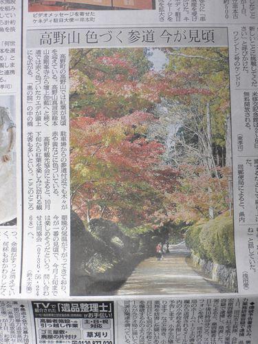kouyakouyou1102010_R.jpg