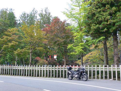 kouyatyouyakuba1018004_R.jpg