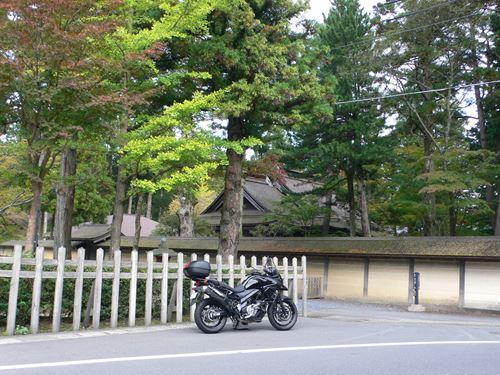 kouyatyouyakuba1018005_R.jpg