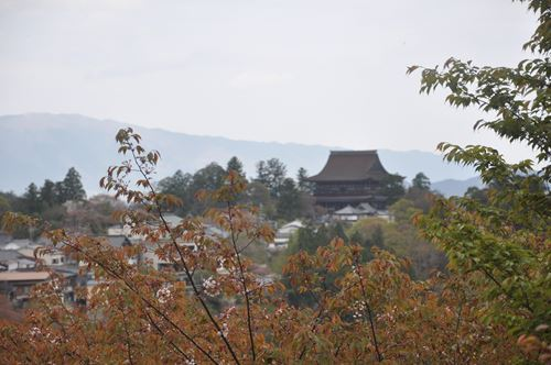 yosinoyama280413001_R.jpg