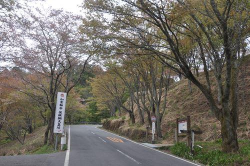 yosinoyama280413003_R.jpg