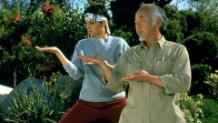 THE-KARATE-KID-3-DI-02.jpg