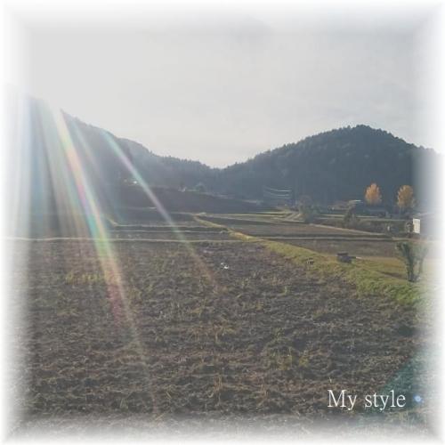 20161113-1.jpg