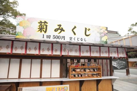 20161112kikumikuji.jpg