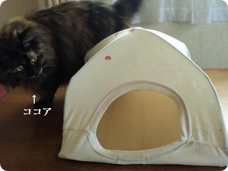 にゃんこ用テント2 (2)