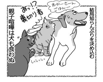 羊の国のラブラドール絵日記シニア!!「犬も食わんよ」5