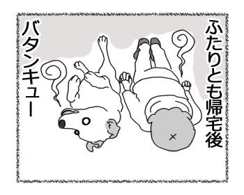 羊の国のラブラドール絵日記シニア!!「シニアのお散歩」6