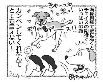 羊の国のラブラドール絵日記シニア!!「ゆうさん、ギックリ」4