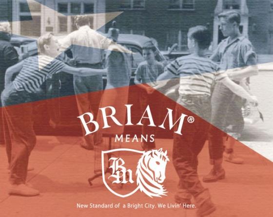 BRIAMバナー519