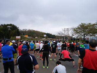 さくらマラソン2