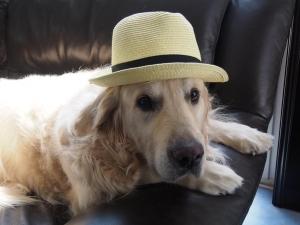 つくし×カンカン帽