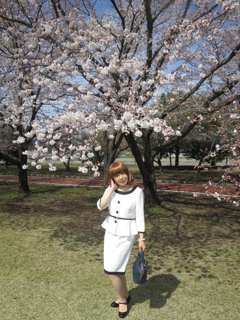 白スーツ春の公園桜A(3)