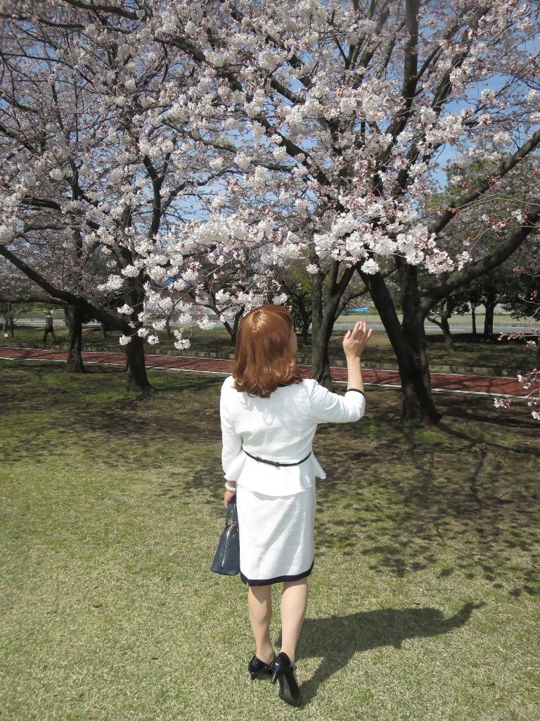 白スーツ春の公園桜A(7)