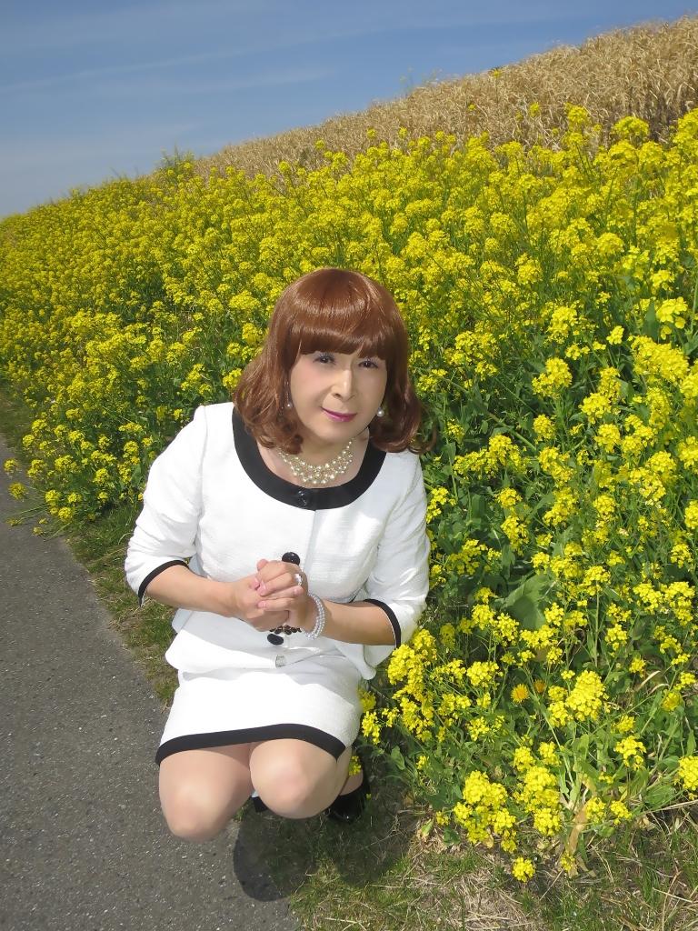 菜の花と白スーツB(2)