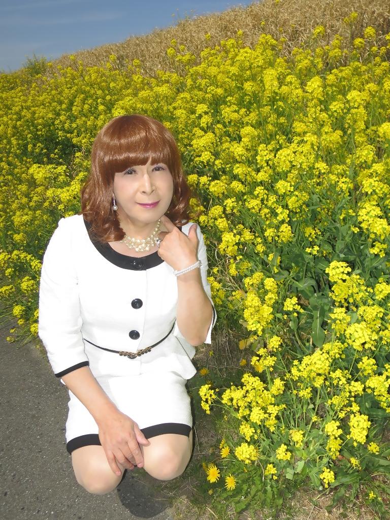 菜の花と白スーツB(5)