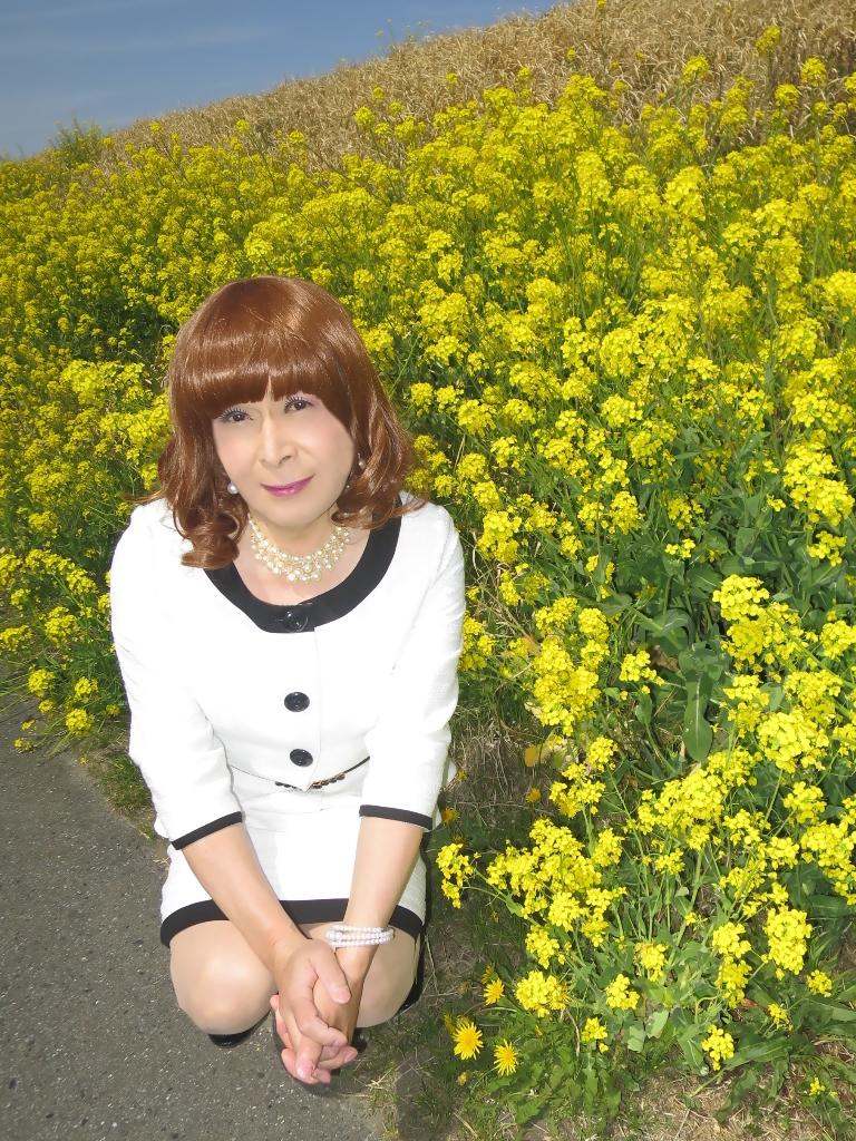 菜の花と白スーツB(7)