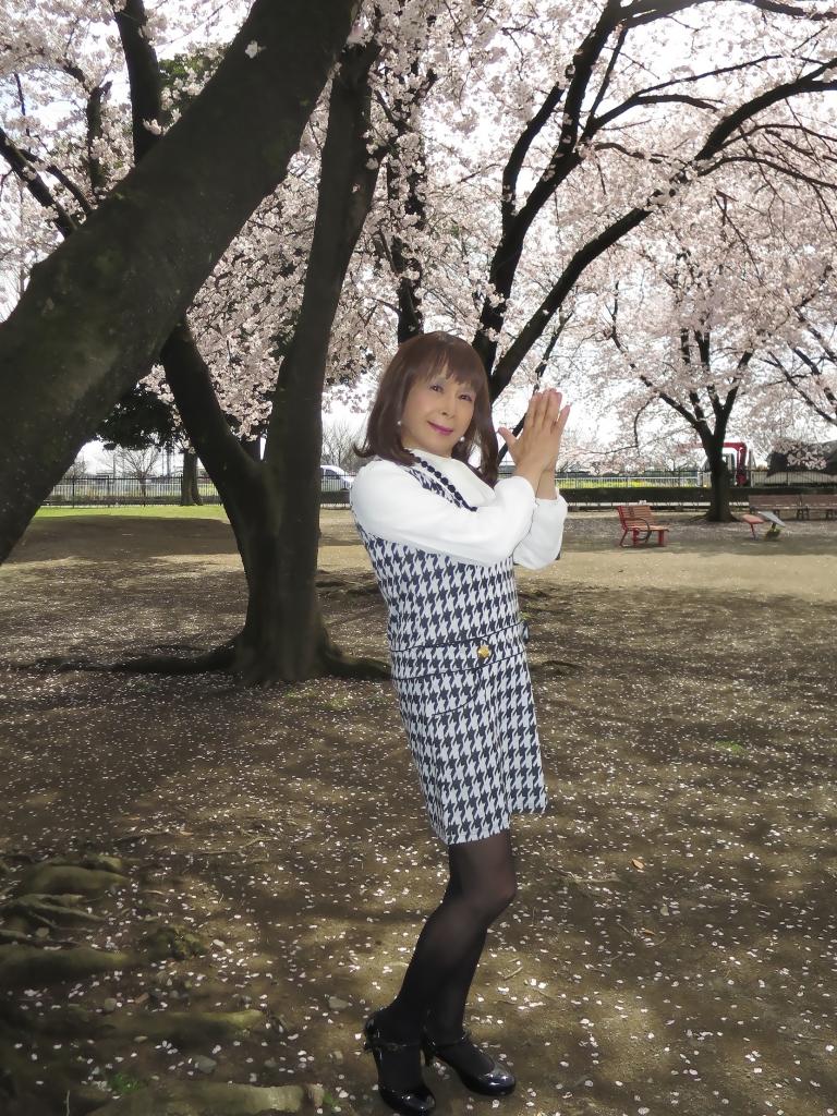 千鳥柄ジャンパースカートA(4)