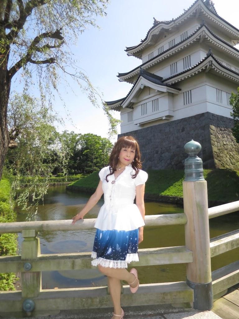 ロングブラウス忍城A(6)